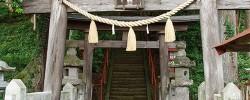 嶽山箒根神社の大杉(那須塩原市宇都野)
