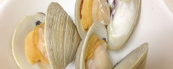 激安の『ホンビノス貝』を簡単に美味しく食べるには酒蒸しが一番ですよっ!
