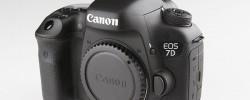 Canon『EOS 1DX』と迷って『EOS 7DMarkⅡ』を購入した話