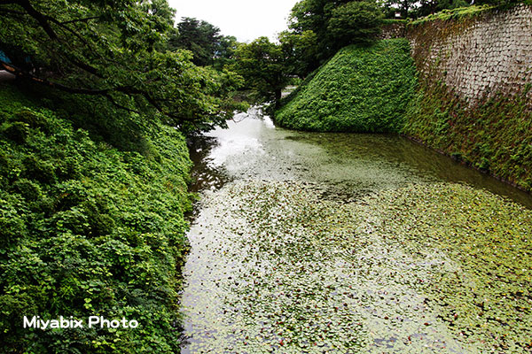 鶴ヶ城,堀