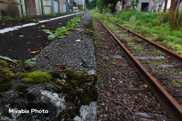 廃線,マニア,鉄道