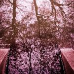 桜,FCPX,ファイナルカット,動画,フリッカー,除去,蛍光灯,チラつき