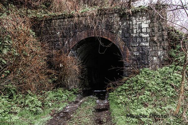 北陸鉄道能登線,能登半島,廃線鉄道