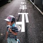 ポケモン散歩