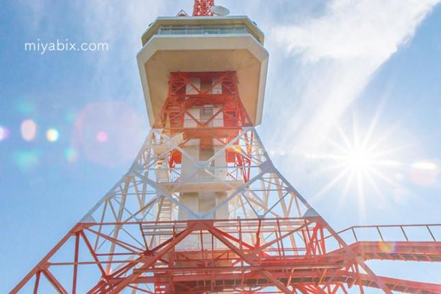 八幡山公園,宇都宮タワー,田川,東京タワー,旧陸軍地下司令部跡,蒲生神社