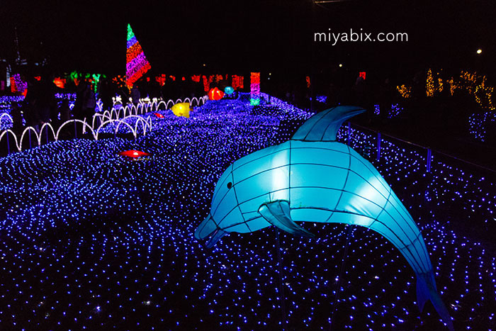 元渕江公園,光の祭典,イルミネーション,足立区,竹ノ塚
