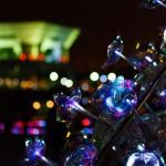 志喜屋徹,チーム,ゼロアンペア,光の咲く木,スマートイルミネーション,アワード,2016,横浜
