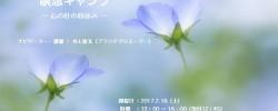 2/18(土)イベントのお知らせ:『瞑想キャンプ・心の杜の昼休み』ツカパー101(神田)