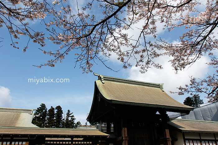 熊本,地震,阿蘇,被災地,阿蘇神社,産神社